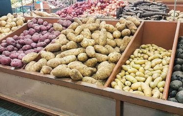 Azerbaijan to Boost Yield
